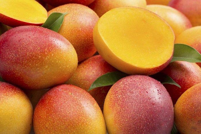 Польза манго для организма