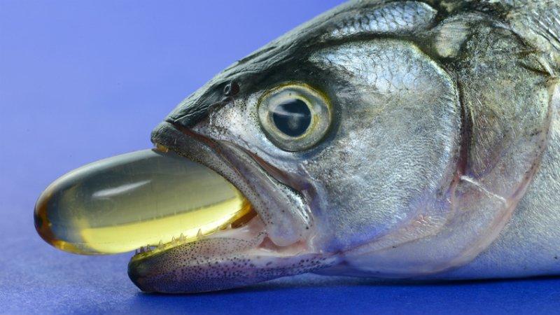 корисна морська риба