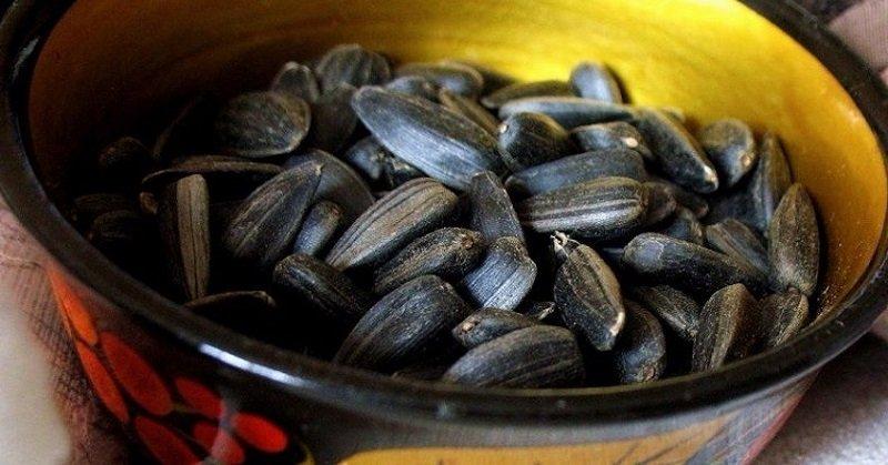 польза семечек для организма