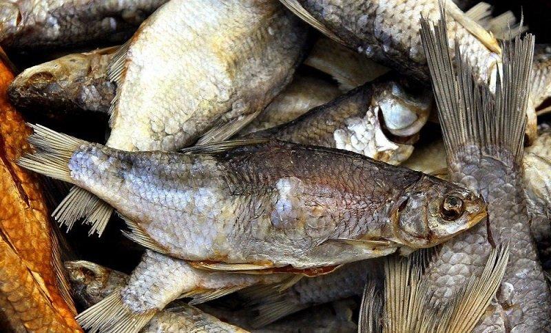 użycie suszonej ryby