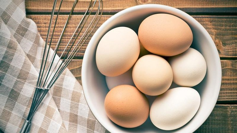 польза яиц для организма