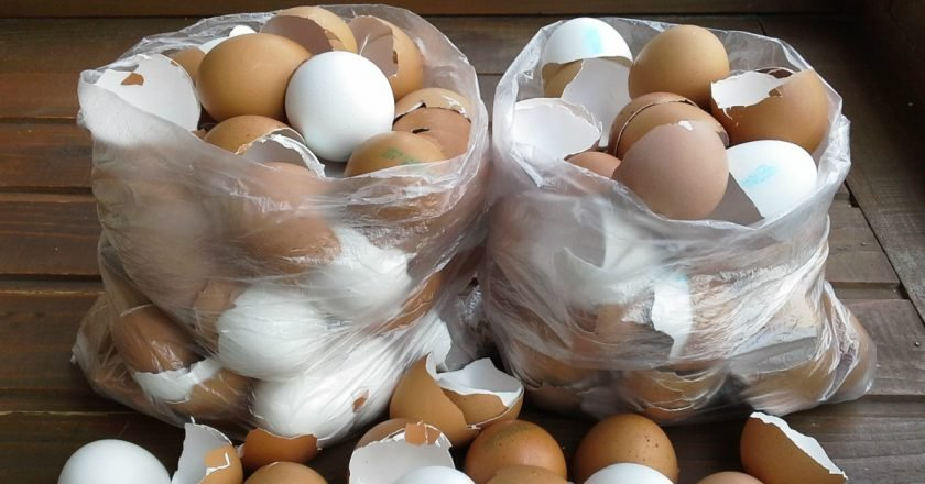 как использовать яичную скорлупу