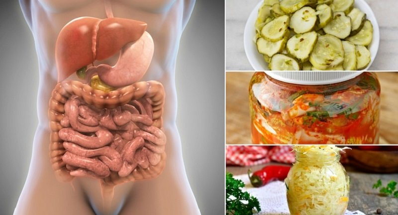 Пребиотики для кишечника