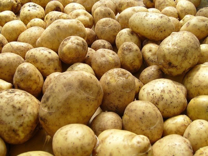 польза картофеля в быту