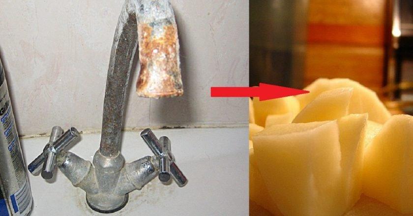 польза картошки в быту