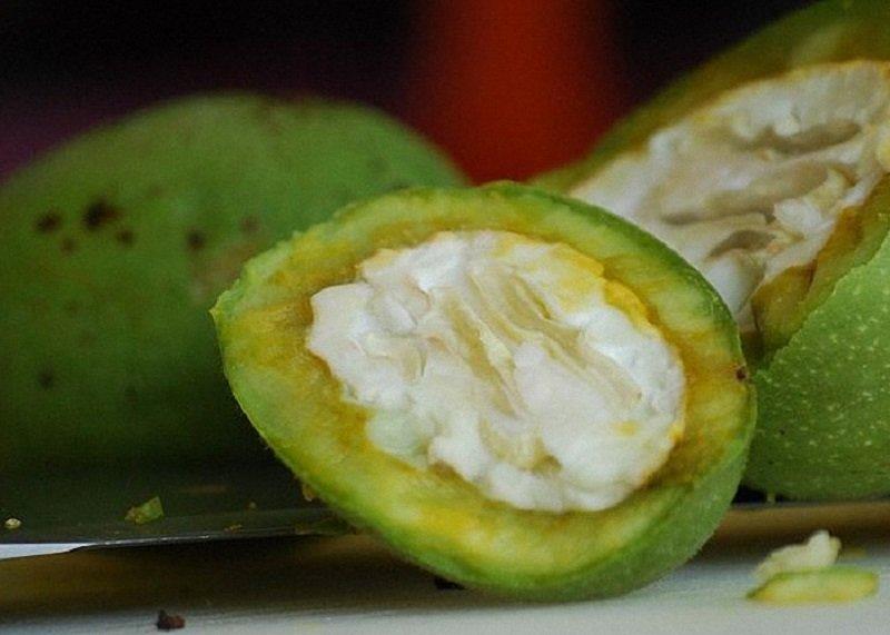 зеленые орехи применение