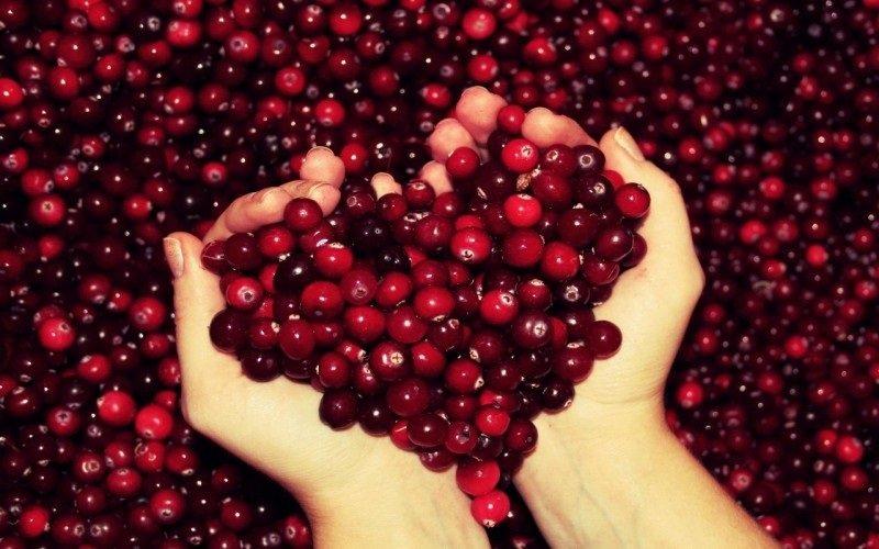 антиоксиданты в ягодах
