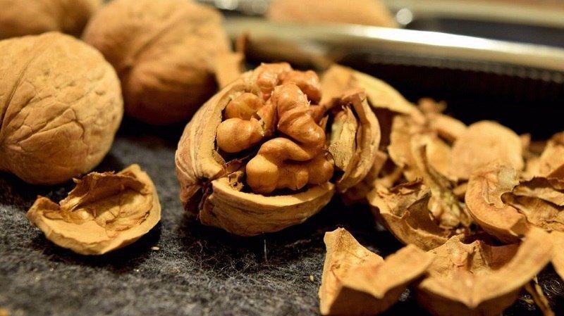 грецкие орехи для работы мозга