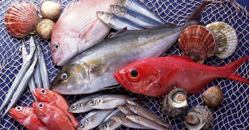 какая рыба полезна