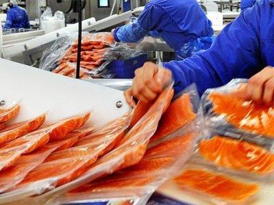 Производство рыбы