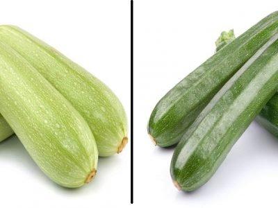 Разница между обычным кабачком и цукини