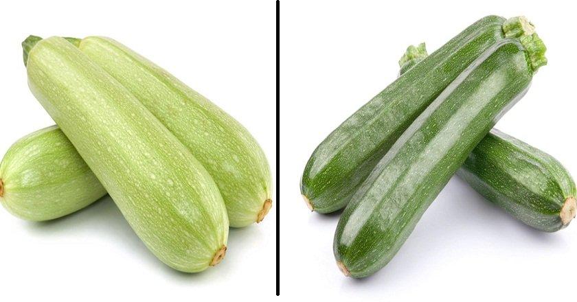 разница между кабачками и цукини