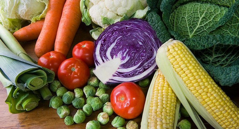 правда про вегетарианство