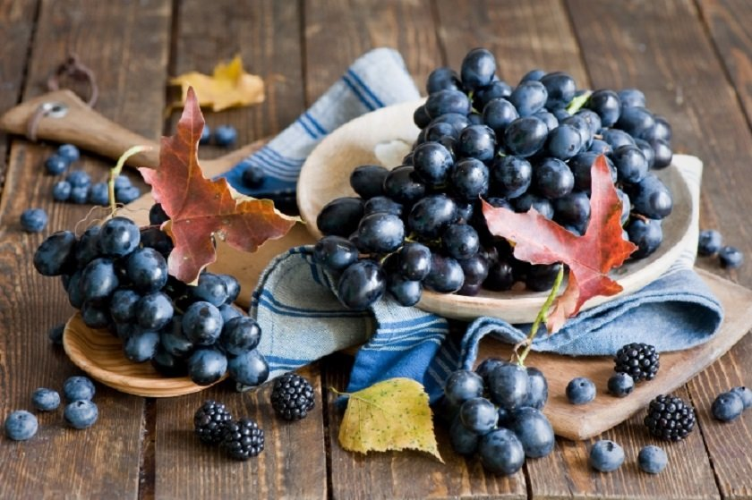 виноград снижает риск развития рака