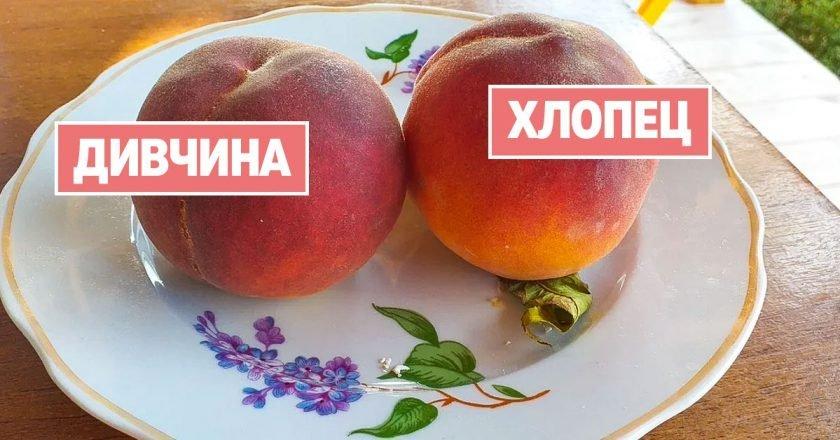 как выбрать персики
