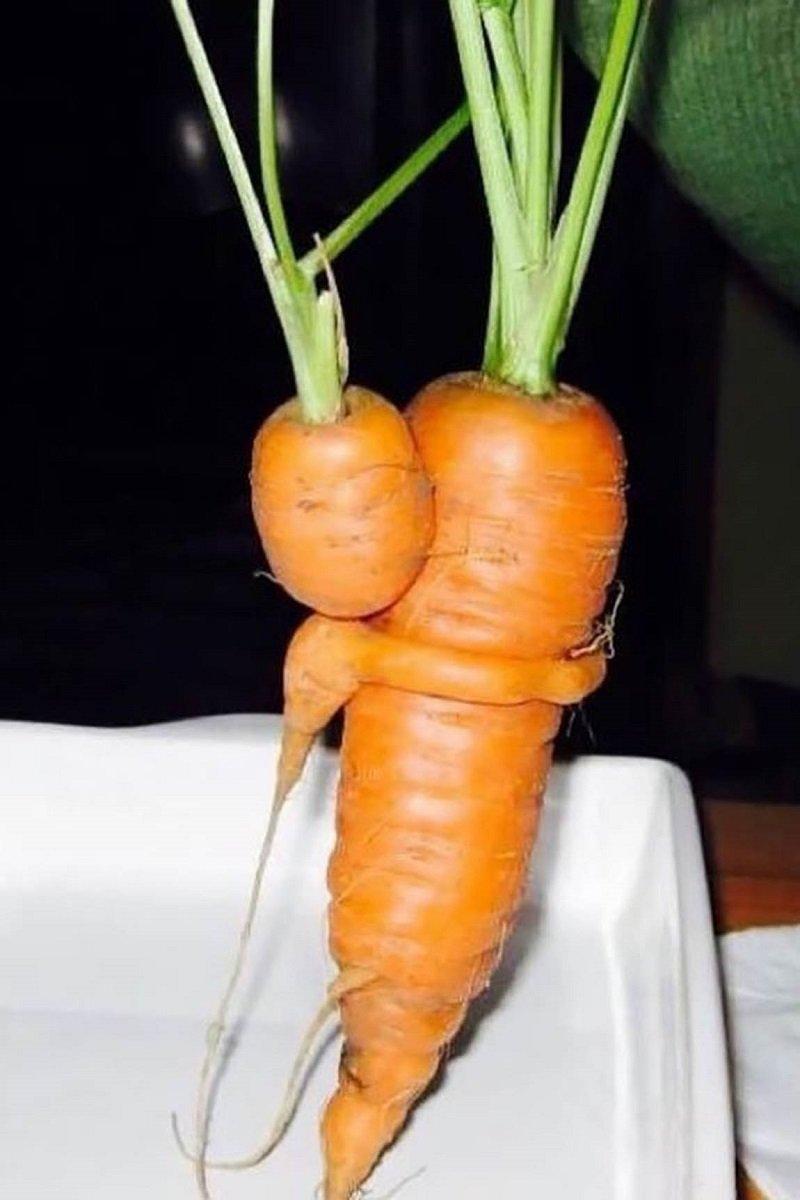смешные снимки еды