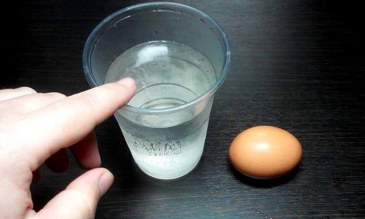 Сроки годности продуктов, яйца