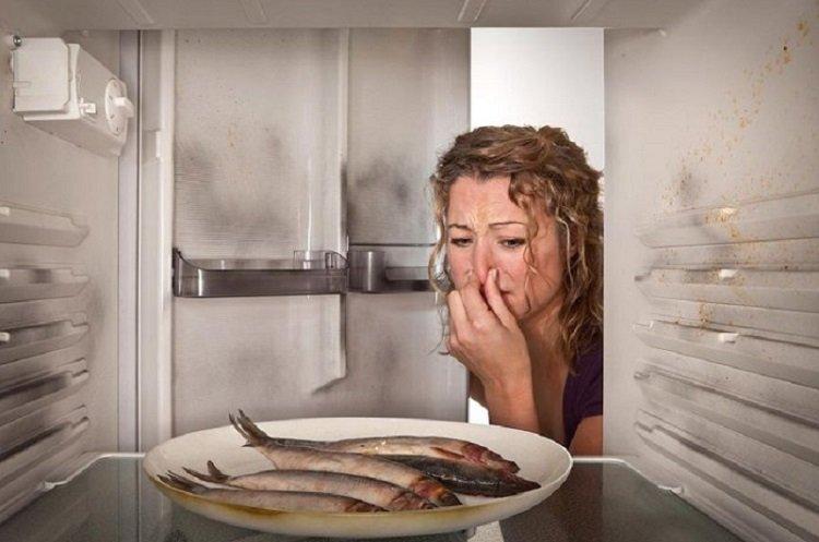 Сроки годности продуктов, рыба