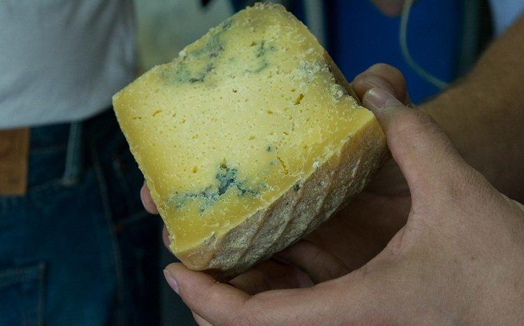 Сроки годности продуктов, сыр