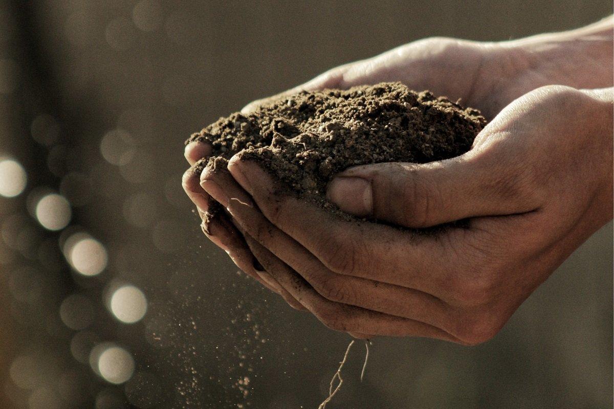 Съедобная земля и люди, которые ее едят