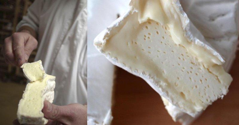 сыр с белой благородной плесенью