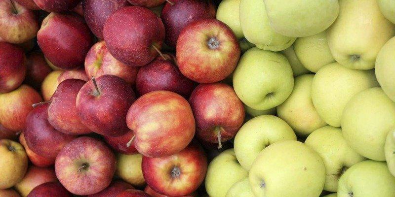 pięć głównych produktów jesieni