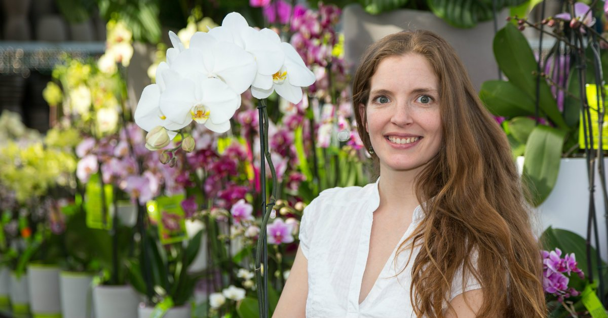Эффективное удобрение для орхидей
