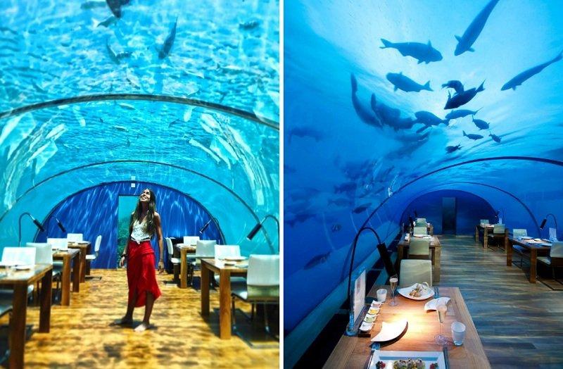 Ресторан Ithaa на Мальдивах