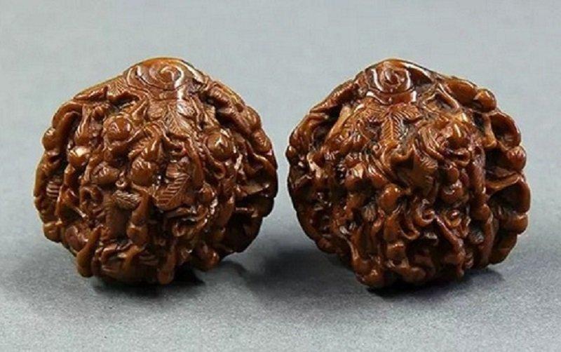 орехи в музее
