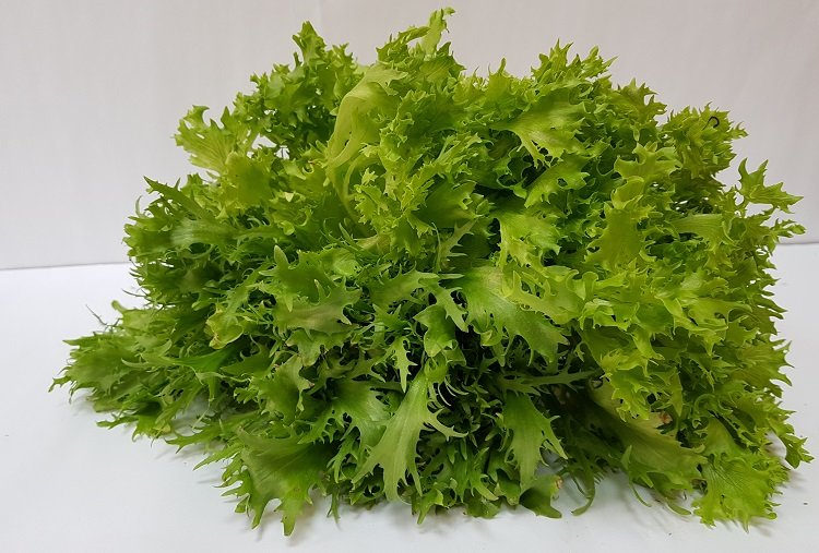 Виды салата с картинками
