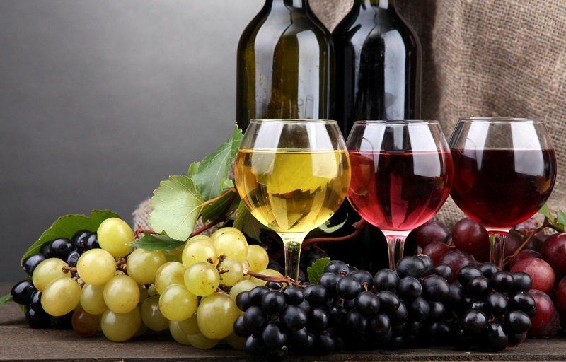биодинамика в виноделии