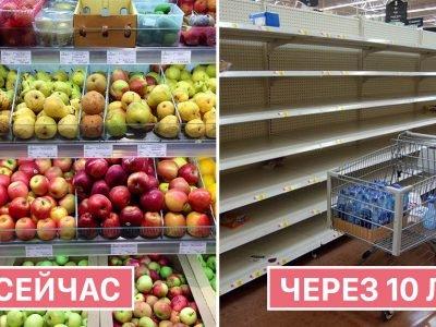 Влияние климата на питание