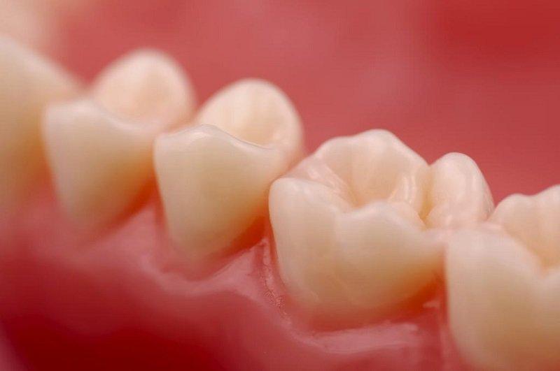 факты о зубочистках