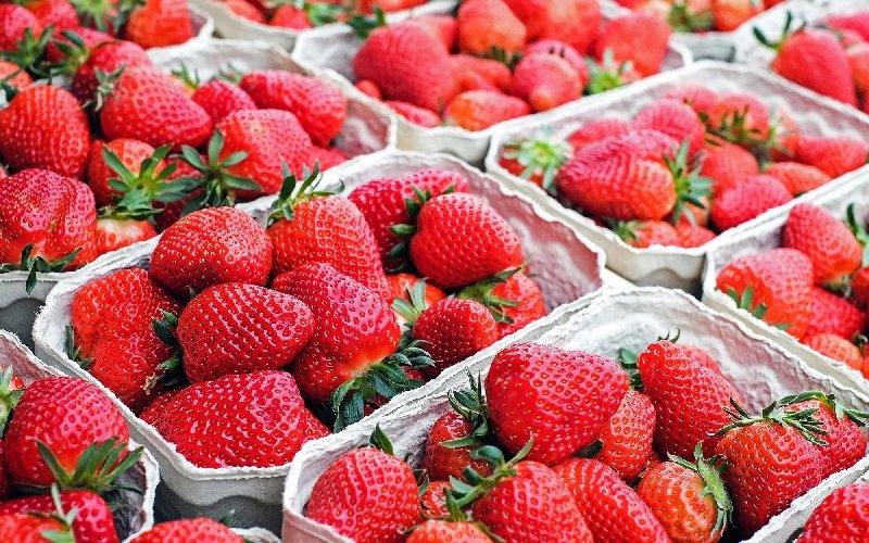 фотографии фруктов