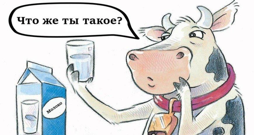 szkód sterylizowanego mleka