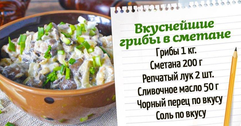Грибы в сметанном соусе