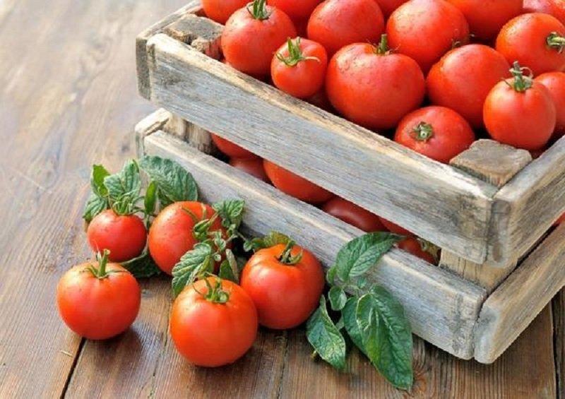 томаты для молодости кожи