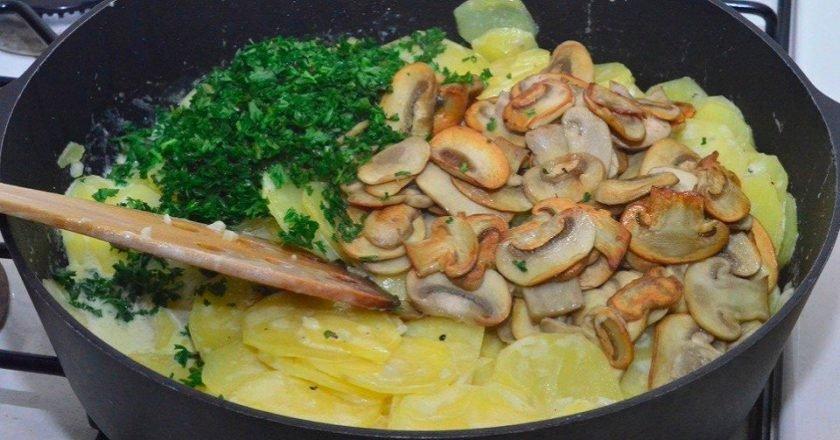 Картофель в сливках с грибами