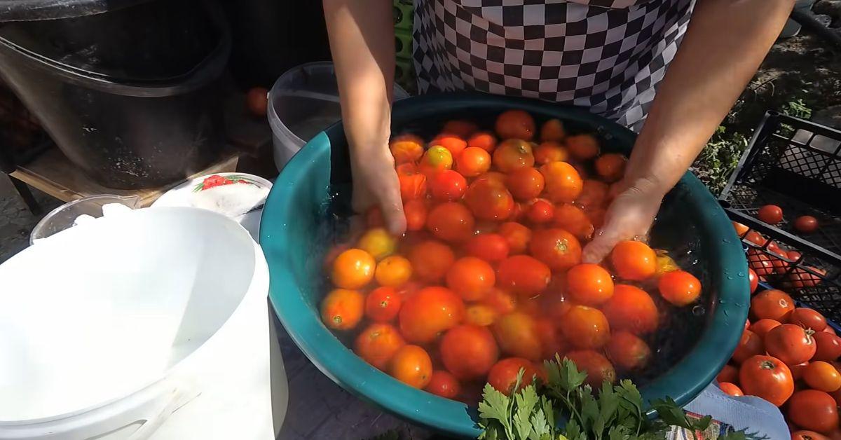 квашеные помидоры в ведре