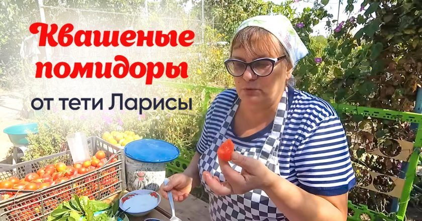 Квашеные помидоры в ведре с сахаром