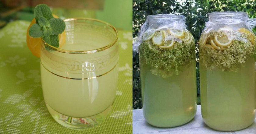 Домашний лимонад из бузины