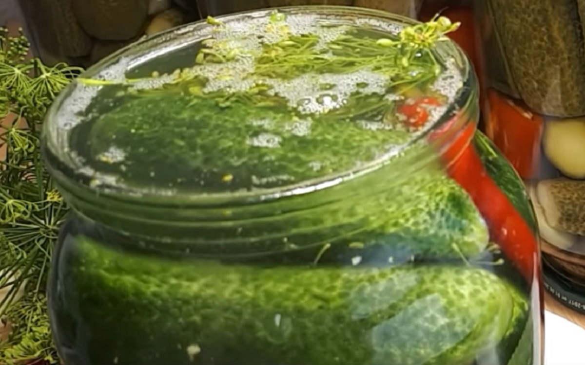 Дитячі мариновані огірки без оцту