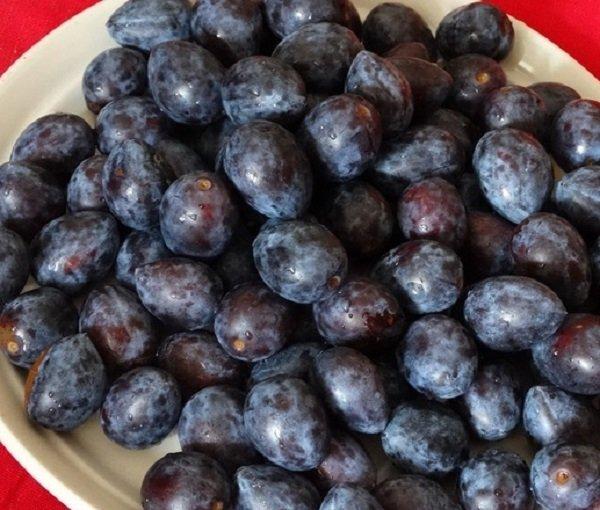 Рецепты мочения сливы