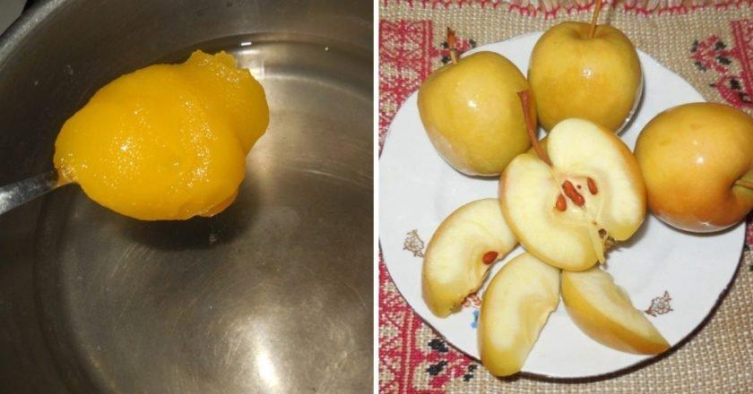 Моченые яблоки на меду