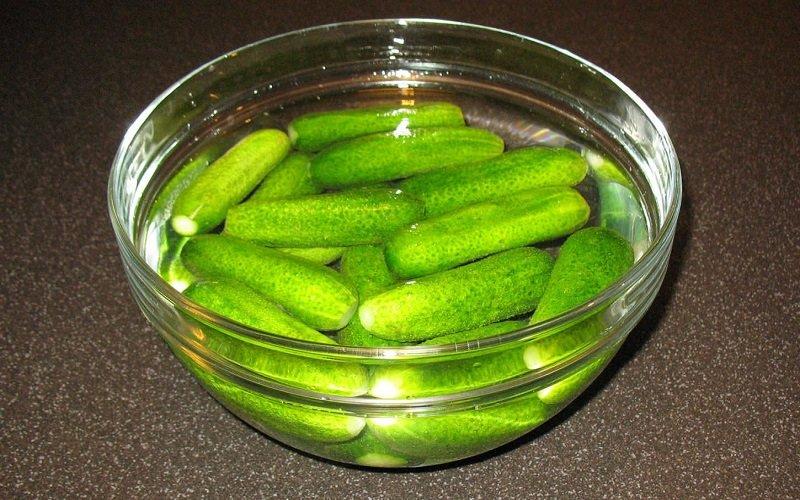Малосольні огірки з м'ятою