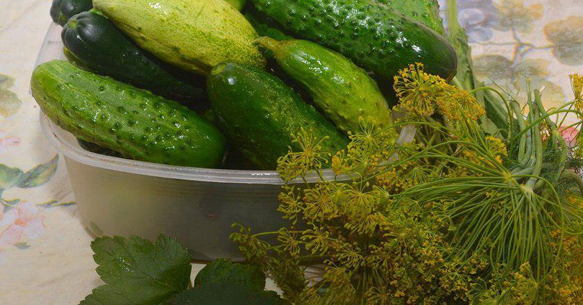 Солоні огірки як з бочки - готуємо з покроковими фото