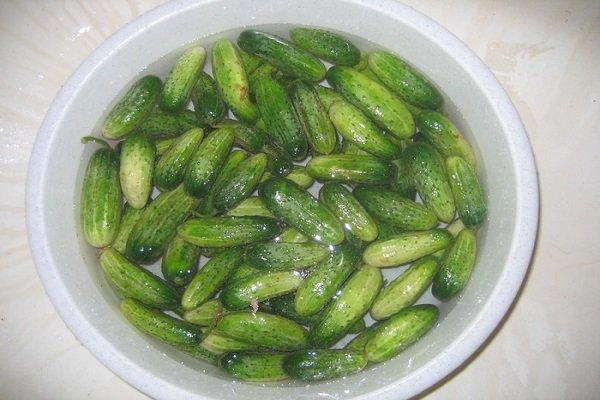 заготовка для оливье